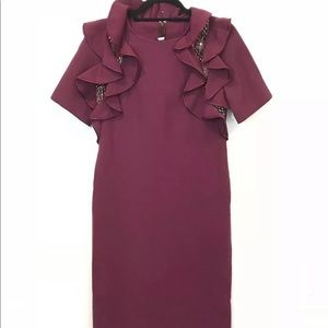 Christian Alta Moda Ruffle Embellished Shift Dress